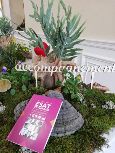 présentoir végétal event design